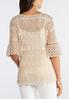 Plus Size Neutral Crochet Pullover Top alternate view