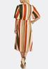 Plus Size Striped Wrap Dress alternate view