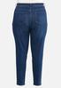 Plus Size Dark Stretch Skinny Jeans alternate view