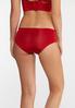 Plus Size Wide Band Lace Inset Panty Set alt view