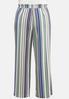 Plus Size Textured Stripe Pants alternate view