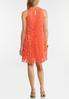 Plus Size Pleated Lace Swing Dress alternate view