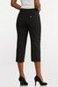 Cropped Stretch Trouser Pants alternate view