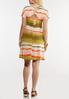 Plus Size Watercolor Stripe Shirt Dress alternate view