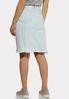 Plus Size Striped Light Wash Denim Skirt alternate view