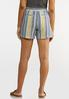 Denim Stripe Linen Shorts alternate view