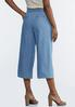 Cropped Paperbag Chambray Pants alternate view