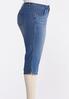 Plus Size Cropped Skinny Jeans alt view