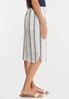 Plus Size Faded Stripe Midi Skirt alt view