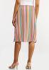 Bright Mod Stripe Skirt alternate view