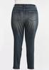 Plus Size Mid- Rise Skinny Jeans alternate view