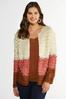 Plus Size Loop Colorblock Cardigan Sweater alternate view
