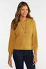 Plus Size Honey Pullover Sweater alternate view