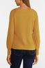 Plus Size Honey Pullover Sweater alt view
