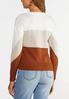 Colorblock Fringe Sweater alternate view