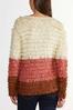 Loop Colorblock Cardigan Sweater alt view