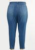 Plus Size High- Rise Jeggings alternate view