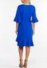 Plus Size Blue Ruffled Trim Dress alternate view