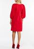 Plus Size Red Pleated Sheath Dress alternate view