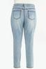 Plus Size Lightwash Skinny Jeans alt view