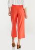 Cropped Spice Wide Leg Pants alternate view