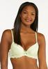 Plus Size Gray And Green Lace Bra Set alternate view
