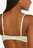 Plus Size Gray And Green Lace Bra Set alt view