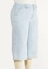 Plus Size Striped Cropped Skinny Jeans alt view