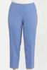 Plus Size Blue Gingham Ankle Pants alternate view