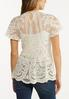 Plus Size Mesh Embroidered Peplum Top alternate view