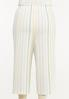Plus Size Cropped Textured Stripe Pants alternate view