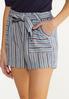 Vintage Stripe Linen Shorts alt view