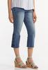 Cropped Embroidered Flare Jeans alt view