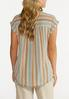 Plus Size Muted Stripe Top alternate view