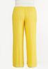 Plus Size Gold Crochet Waist Pants alternate view