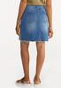 Plus Size Embroidered Denim Skirt alternate view