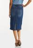 Plus Size Colorblock Denim Skirt alternate view