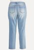 Plus Size Lightwash Jeans alternate view