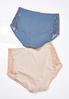 Plus Size High Waist Brief Panty Set alternate view