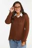 Plus Size Distressed V- Neck Sweater alt view