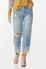Curvy Destructed Ankle Jeans alt view