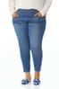Plus Size Pull- On Jeggings alt view